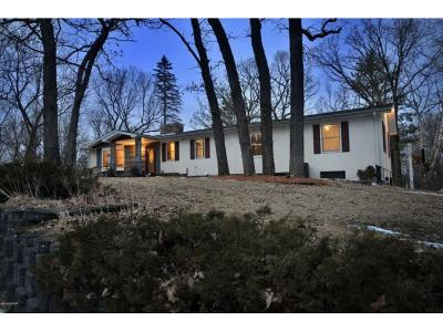 Kandiyohi County Single Family Home For Sale: 12000 199th Avenue NE