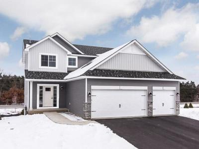 Rosemount Single Family Home For Sale: 13906 Ashford Path