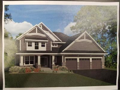 Shoreview Single Family Home For Sale: 4078 Mackubin Street