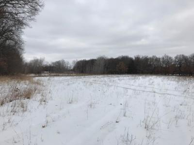 Isanti Residential Lots & Land For Sale: 285th Avenue NW