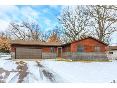 North Branch Single Family Home For Sale: 6126 Red Fox Run