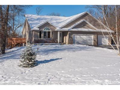 Isanti Single Family Home For Sale: 25248 Lincoln Drive NE
