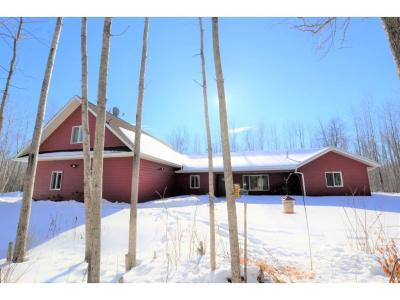 Grand Rapids Single Family Home For Sale: 34467 Gama Beach Road
