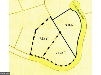 Watertown, Delano, Mayer, Waconia, Mound, New Germany, Norwood Young America, Cologne, Victoria, Minnetrista, Maple Plain, Montrose Residential Lots & Land For Sale: 7375 Equestrian Way