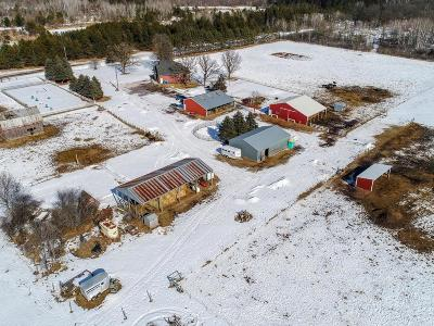 Chisago County Single Family Home For Sale: 16703 River Road