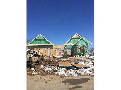 Rosemount Single Family Home For Sale: 13116 Aulden Avenue