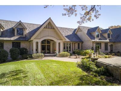 Sunfish Lake Single Family Home For Sale: 295 Salem Church Road