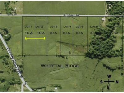 Watertown, Delano, Mayer, Waconia, Mound, New Germany, Norwood Young America, Cologne, Victoria, Minnetrista, Maple Plain, Montrose Residential Lots & Land For Sale: 2990/3000 Highland Road