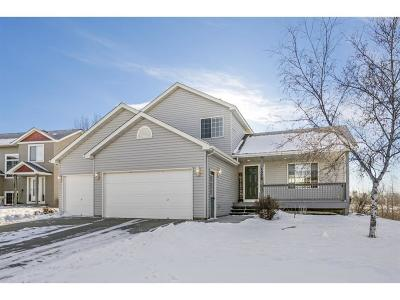 Waconia Single Family Home For Sale: 1379 Creekside Drive
