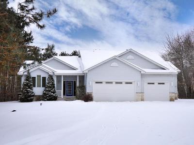 Ham Lake Single Family Home For Sale: 17230 Kenyon Street NE