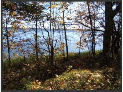 Residential Lots & Land For Sale: 00000tbd 223rd