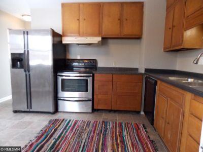 Saint Paul Single Family Home For Sale: 1685 Bush Avenue