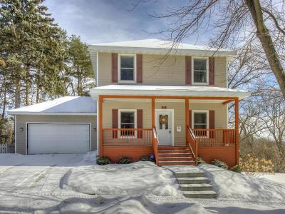 Saint Paul Single Family Home For Sale: 222 Griggs Street S