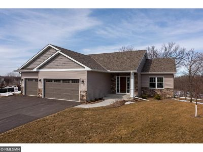 Watertown MN Single Family Home For Sale: $394,900