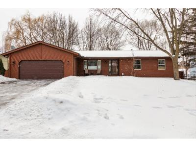 Lakeville Single Family Home For Sale: 1009 157th Street E