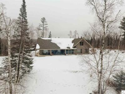 Duluth Single Family Home For Sale: 6182 Bergen Lake Drive