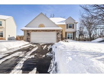Inver Grove Heights Single Family Home For Sale: 8931 Carter Court