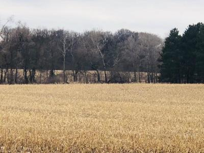 Sherburne County Residential Lots & Land For Sale: Xxxxx 313th Ave NW