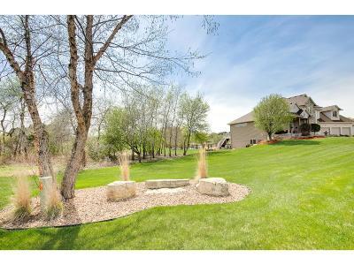 Ham Lake Single Family Home For Sale: 14260 Vermillion Street NE
