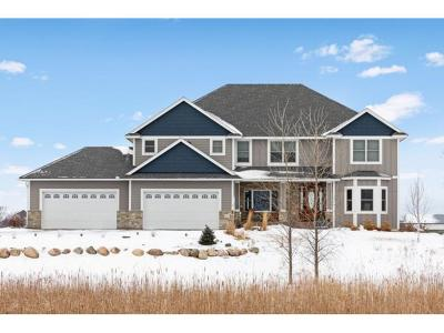 Scott County Single Family Home For Sale: 19020 Oak Grove Avenue