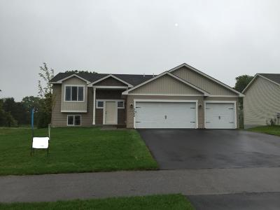Ham Lake Single Family Home For Sale: 172nd Avenue NE