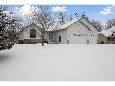Andover Single Family Home For Sale: 3313 139th Lane NW