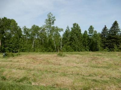 Moose Lake Residential Lots & Land For Sale: Lot 1 Milczark Circle