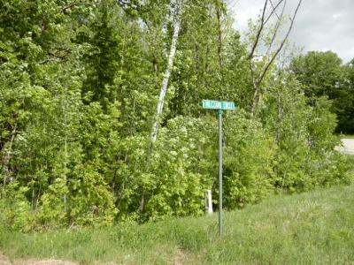 Moose Lake Residential Lots & Land For Sale: Lot 2 Milczark Circle