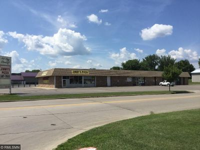 Hutchinson MN Commercial For Sale: $460,000