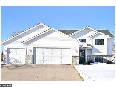 Saint Joseph Single Family Home For Sale: 1317 Dale Street