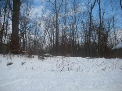 Savage Residential Lots & Land For Sale: 13213 Pennsylvania Avenue