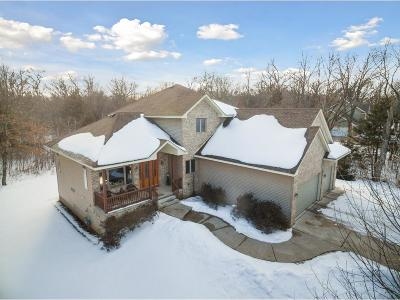 North Branch Single Family Home For Sale: 34390 Lanesboro Court