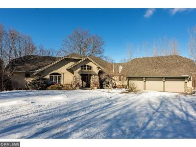 Orono MN Single Family Home For Sale: $869,000