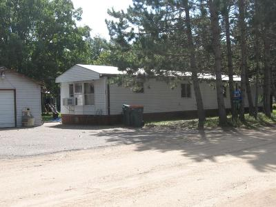Motley Single Family Home For Sale: 565 Norway Lane