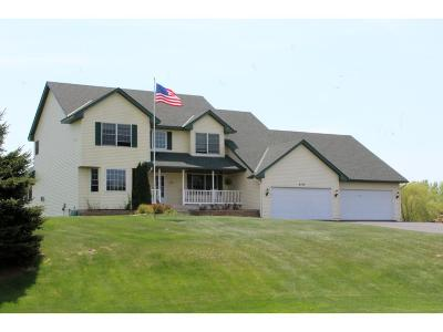 Ham Lake Single Family Home For Sale: 4902 166th Avenue NE