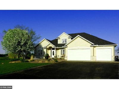 Lakeville Single Family Home For Sale: 24241 Black Walnut Drive