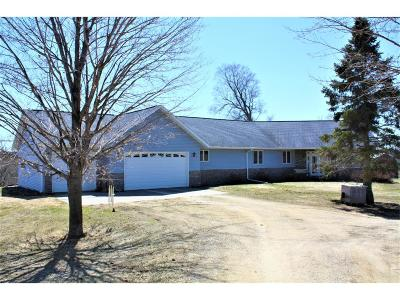 Ellsworth WI Single Family Home For Sale: $450,000