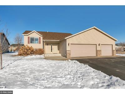 Saint Augusta MN Single Family Home For Sale: $204,900
