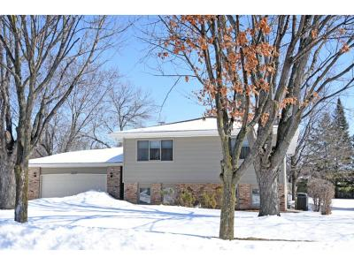 Apple Valley Single Family Home For Sale: 13810 Holyoke Path