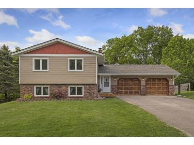 Wright County Single Family Home For Sale: 178 100th Street SW