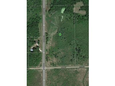 Dalbo MN Residential Lots & Land For Sale: $69,900