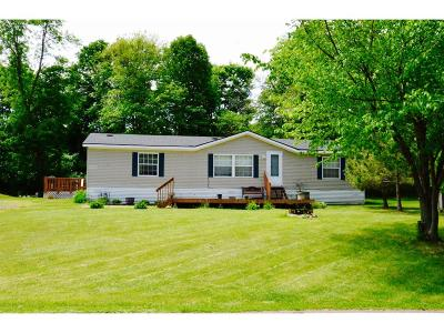 Mille Lacs County Single Family Home For Sale: 12641 Twilight Road