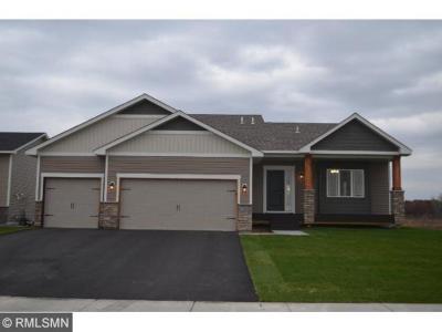 Ham Lake Single Family Home For Sale: 17131 Rendova St