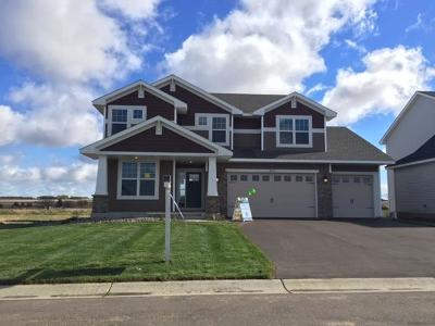 Chisago County, Washington County Single Family Home For Sale: 9830 Glacial Valley Alcove
