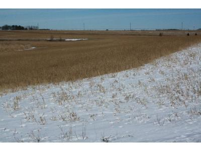 Kimball MN Residential Lots & Land For Sale: $42,000