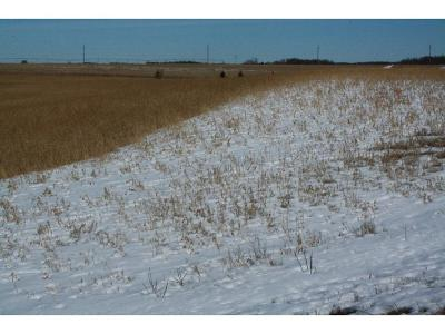 Kimball MN Residential Lots & Land For Sale: $41,900