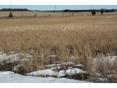 Kimball MN Residential Lots & Land For Sale: $36,900