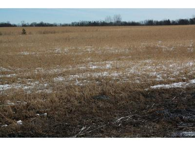 Kimball MN Residential Lots & Land For Sale: $189,900