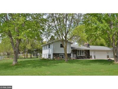 Saint Cloud Single Family Home For Sale: 1427 Pattison Road