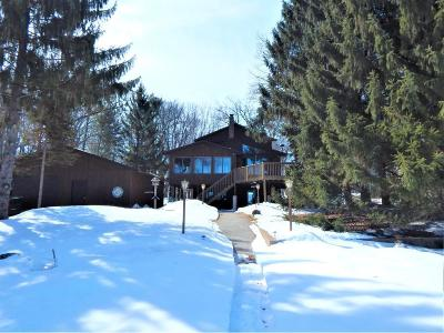 Pine City Single Family Home Contingent: 9865 Pine Shores Dr.
